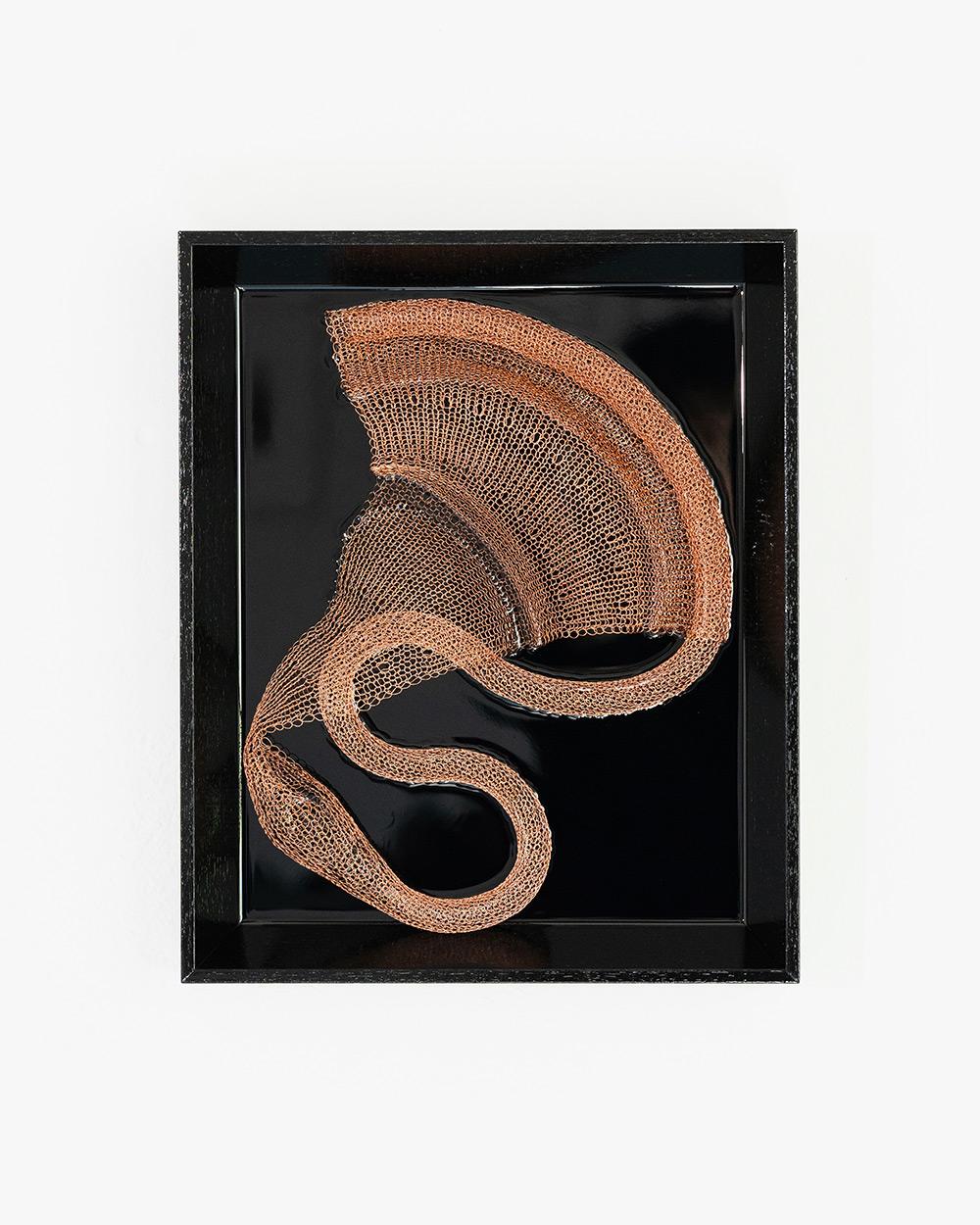 Julia Smirnova - Asklepios Trace