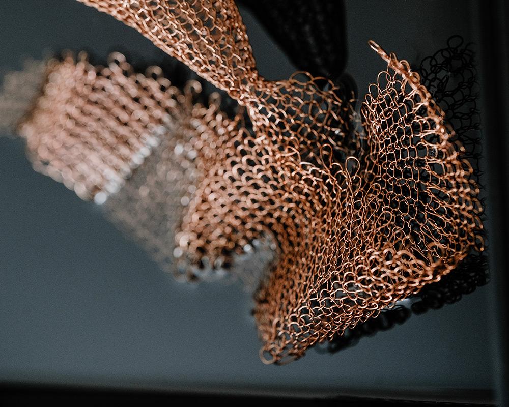 Julia Smirnova - Coleoidea Spiralis