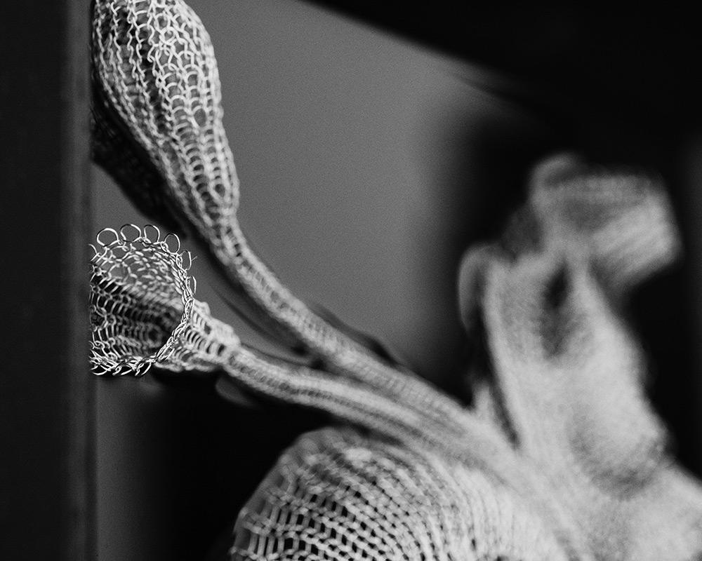 Julia Smirnova - Les Fleurs du Mal